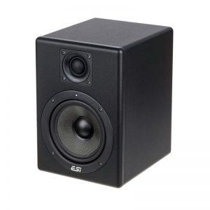 اسپیکر مانیتورینگ ESI Aktiv 05 | خرید اسپیکر مانیتورینگ ESI مدل Aktiv 05 | اسپیکر مانیتورینگ ESI دارای قیمت و کیفیت بسیار عالی میباشد | کالا استودیو